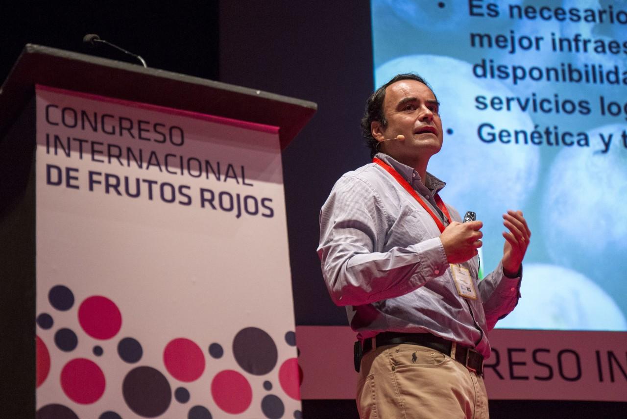Rodrigo Fernando Manzo Baeza