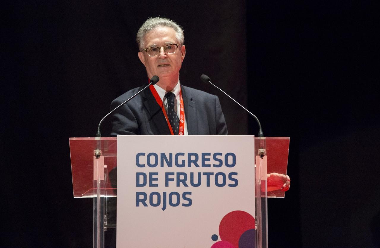 José Antonio Irles Rocamora