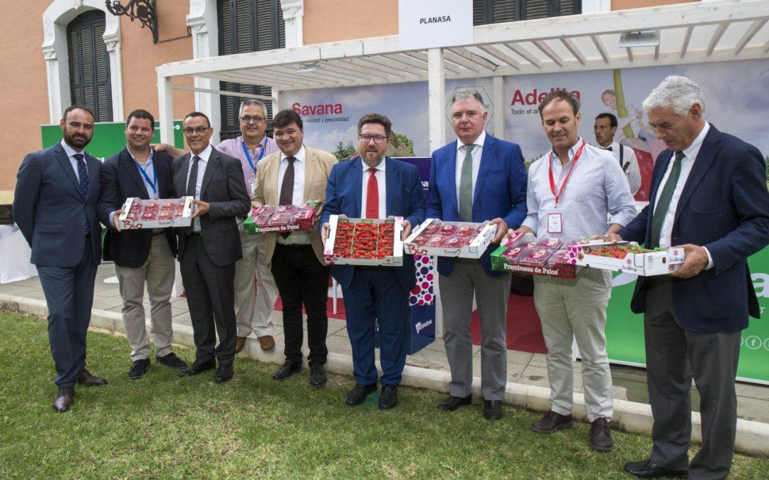 Las tendencias de los nuevos mercados y consumidores en Emiratos Árabes, Reino Unido, China y Alemania centran la primera jornada técnica del 4º Congreso Internacional de Frutos Rojos
